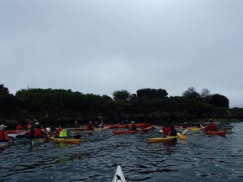 Groupe Rando - Golfe du Morbihan (22/04/2018)